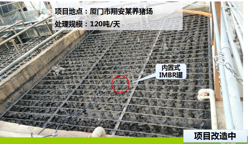 翔安某猪场污水处理案例